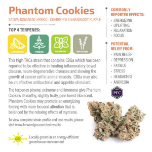 Phantom Cookies